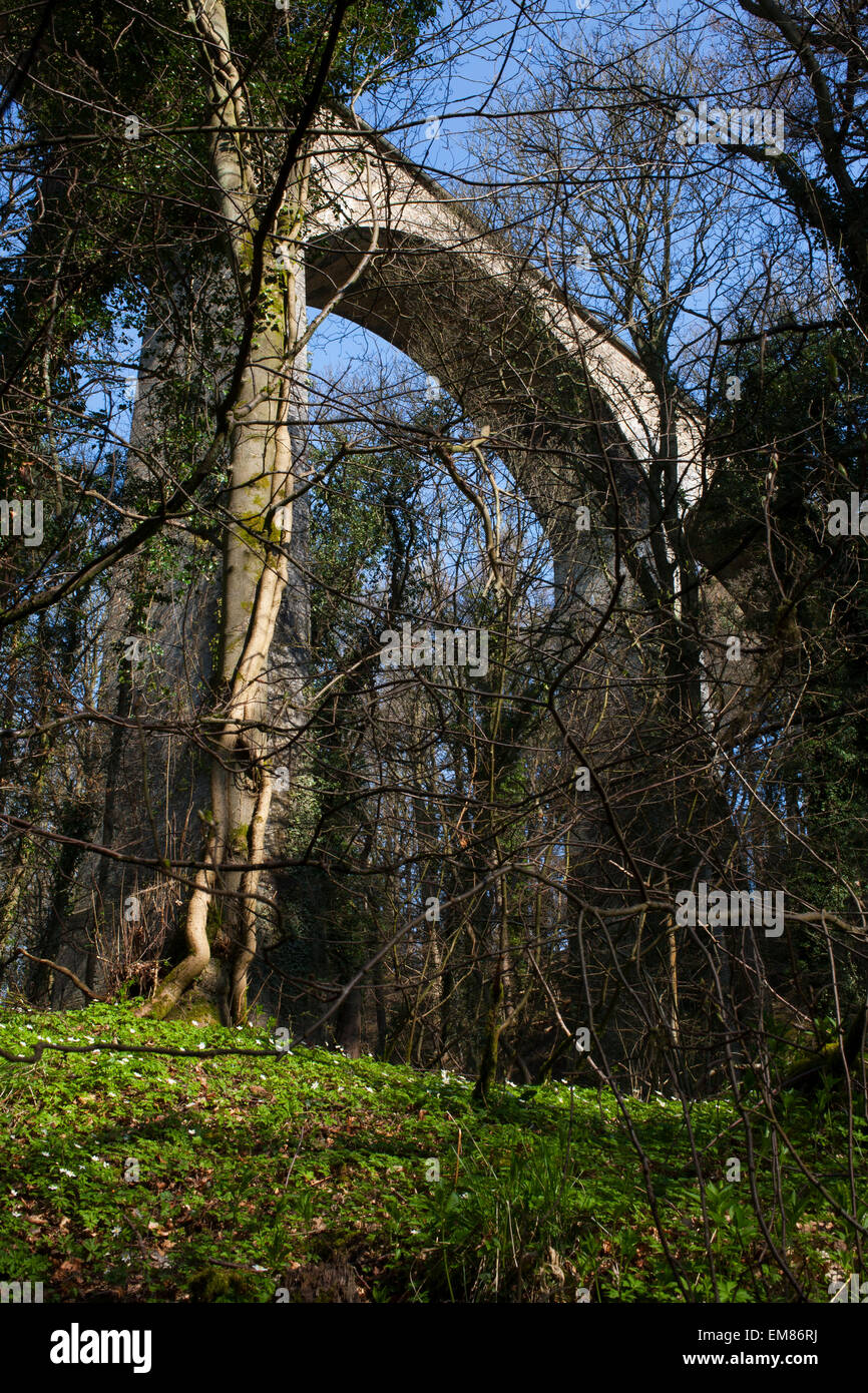 The Pontburn Viaduct that crosses the Pont Burn River in County Durham. Stock Photo