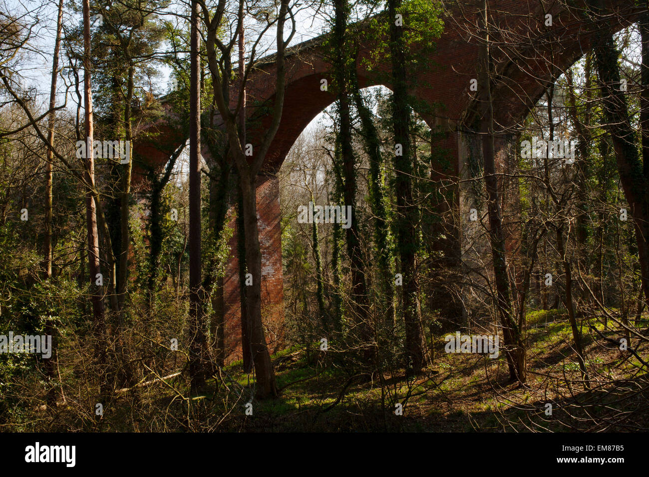 The Foegoesburn Viaduct that crosses the Foe Goes Burn in County Durham. Stock Photo