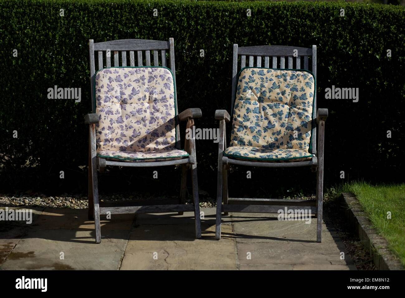 Etonnant Two Deck Chairs With Soft Floral Cushions Against A Hedge In The UK   Stock  Image