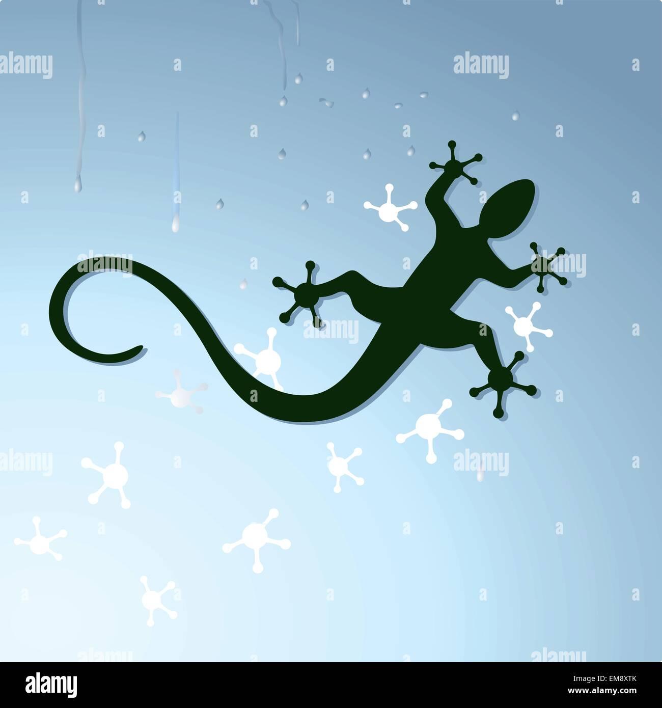gecko to crawl - Stock Image