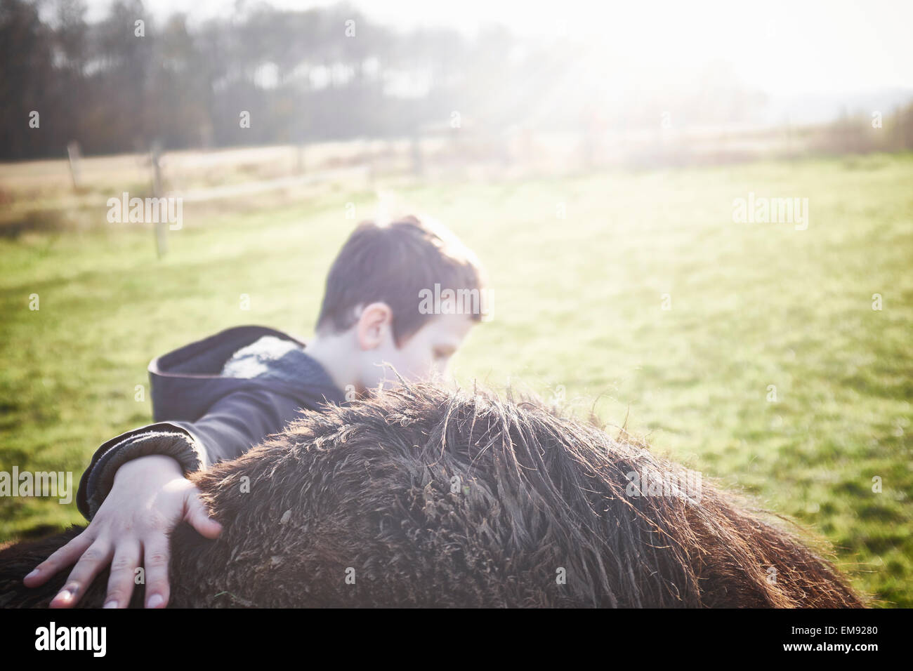 Boy And Horse High Resolution Stock Photography And Images Alamy
