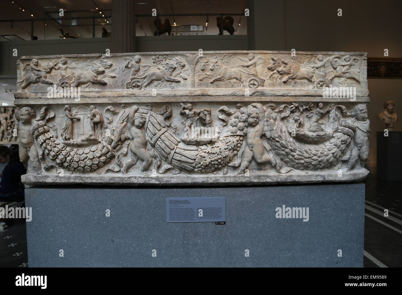 Roman sarcophagus with garlands and the myth of Theseus and Ariadne. Marble. Hadrianic or Early Antonine period, - Stock Image