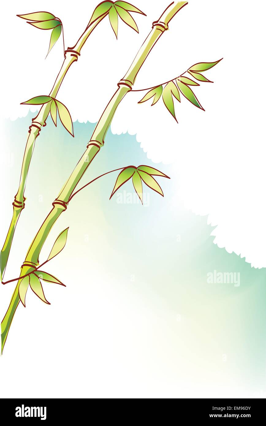 Green Bamboo stems - Stock Image