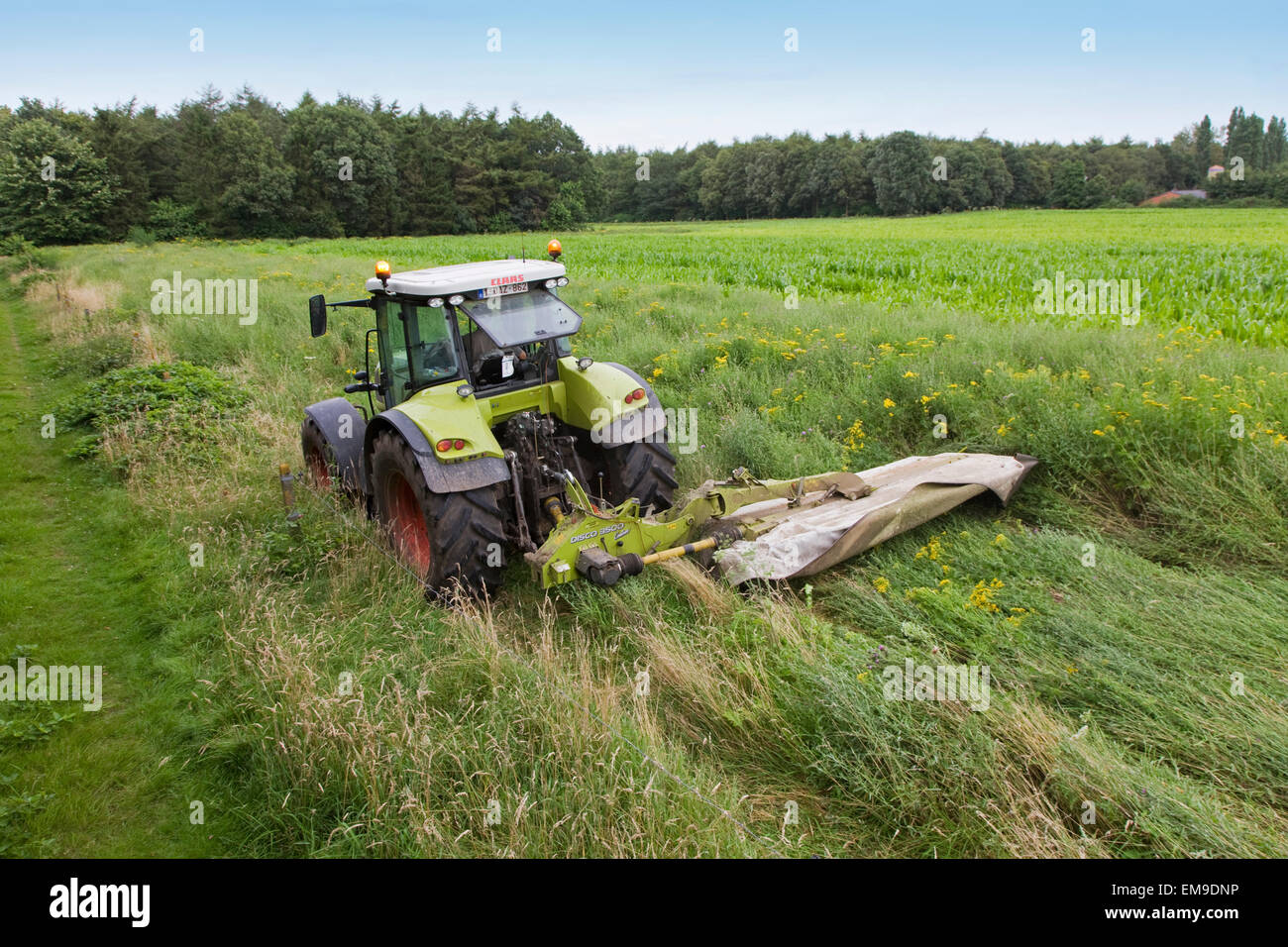 Tractor with cutter bar / single-bar mower / sickle bar mower mowing grass in meadow - Stock Image