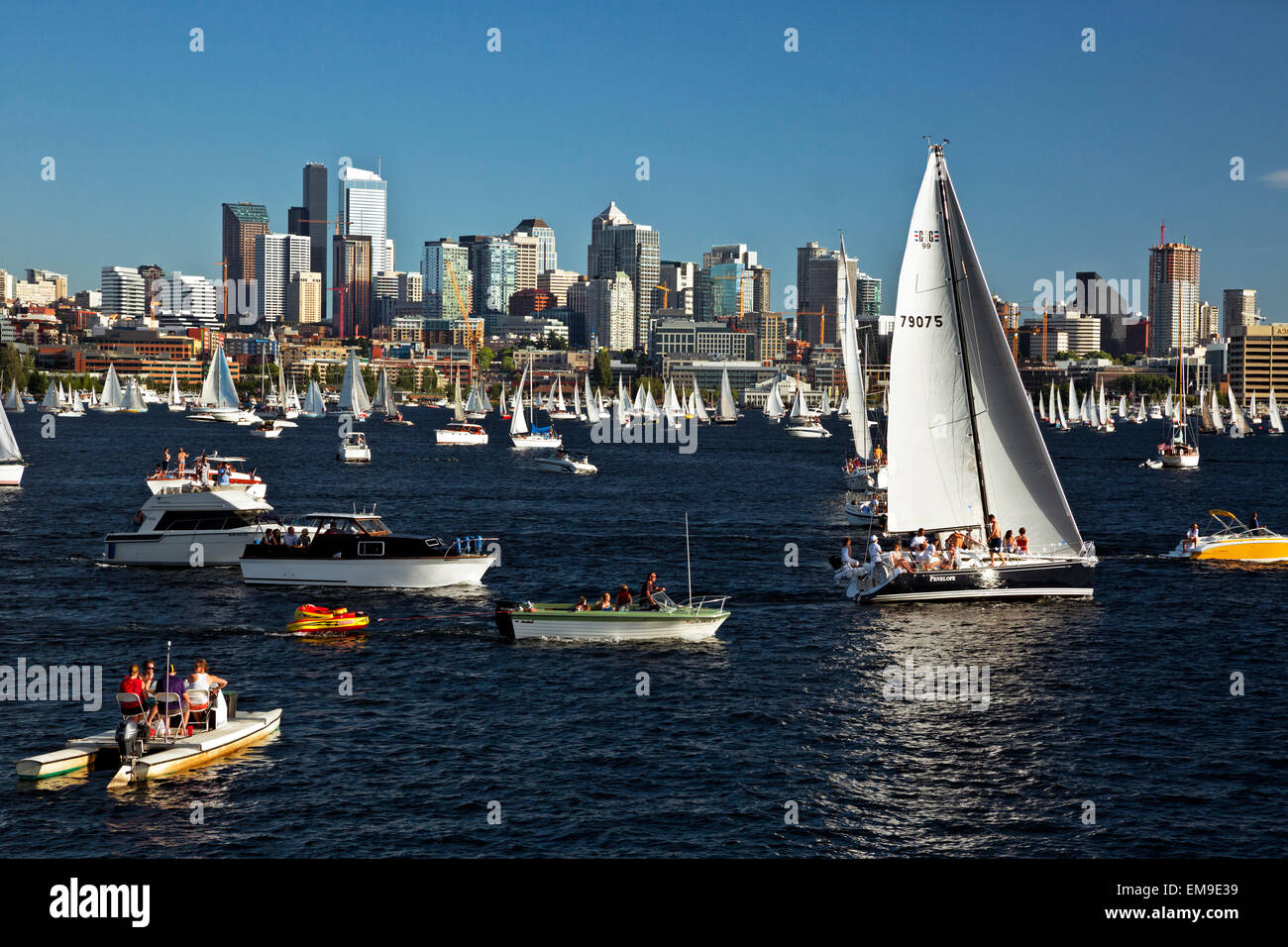 WA10378-00...WASHINGTON - Busy evening on Lake Union as the sailboats prepare for the Tuesday Duck Dodge in Seattle. - Stock Image