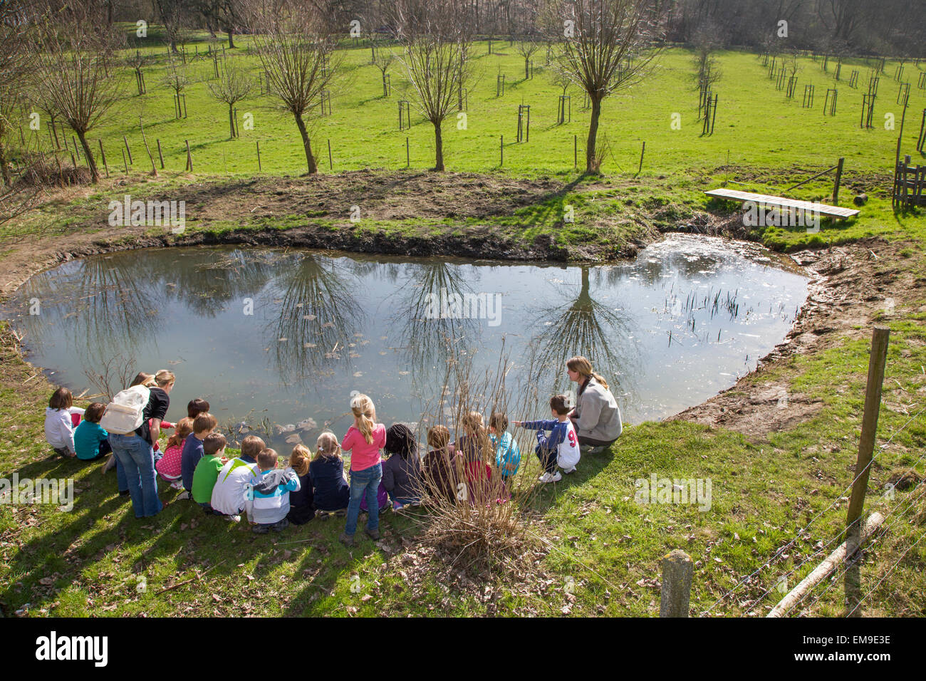 School children with teachers looking at frogspawn in old watering place for cattle, habitat for amphibians like - Stock Image