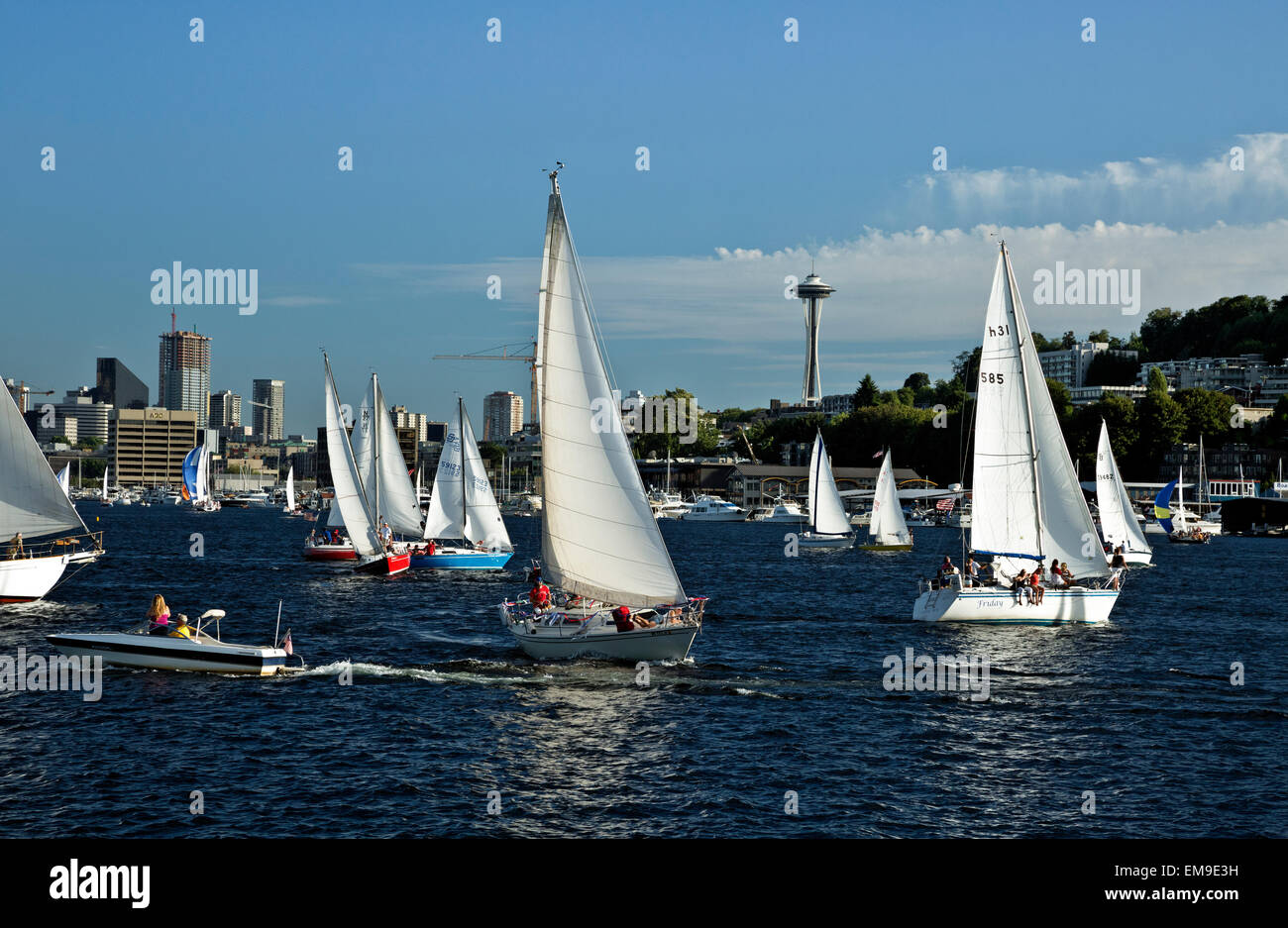 WA10382-00...WASHINGTON - Busy evening on Lake Union as the sailboats head out on the Tuesday Duck Dodge in Seattle. - Stock Image