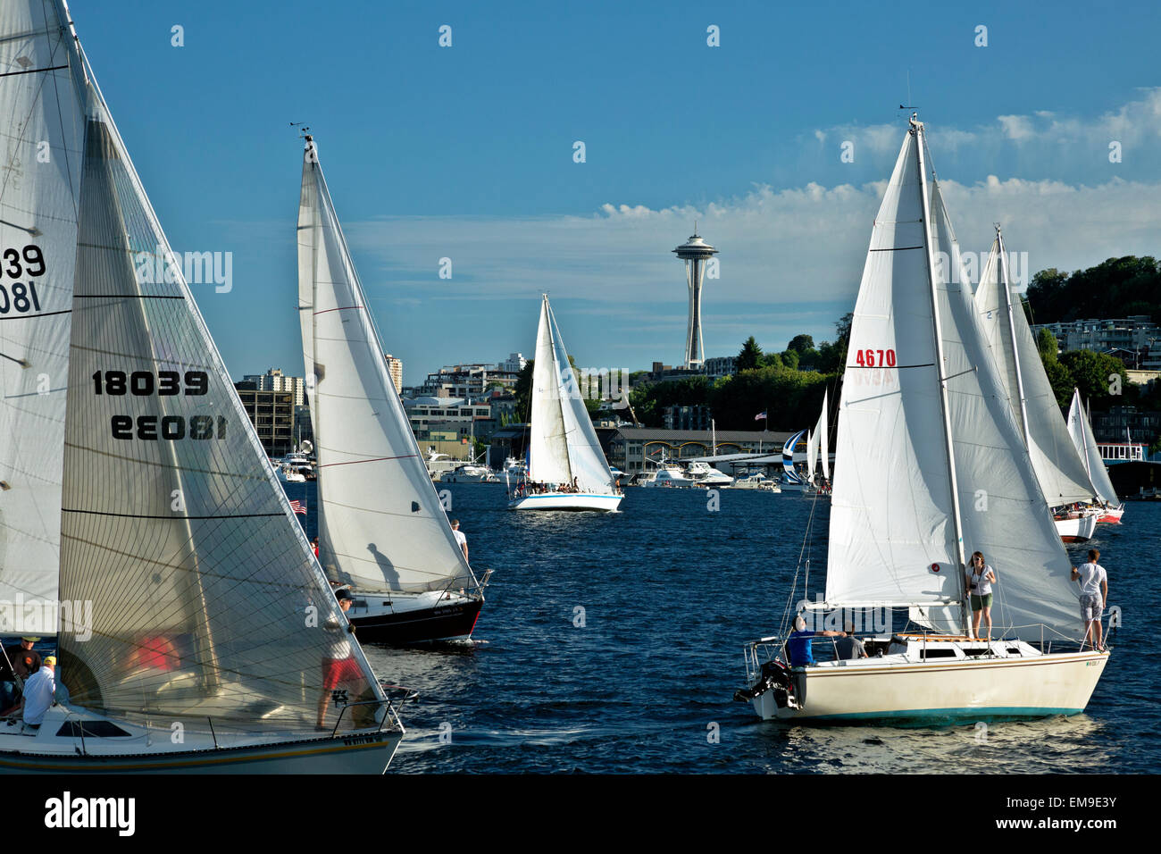 WA10386-00...WASHINGTON - The Tuesday Duck Dodge in Seattle makes for a busy evening on Lake Union. (No MR). - Stock Image