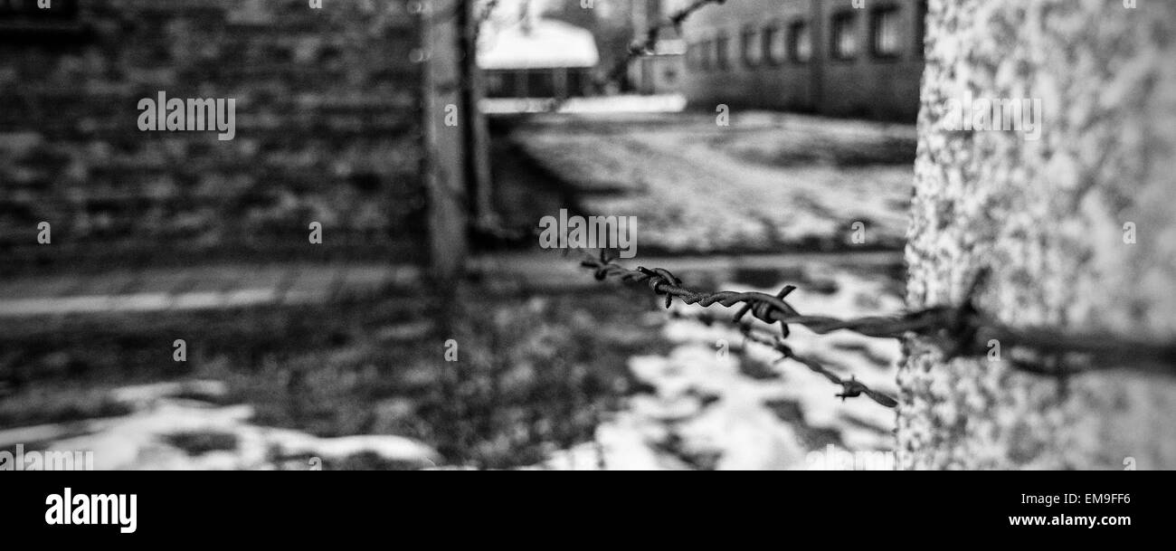 Auschwitz barbed wire fence - Stock Image