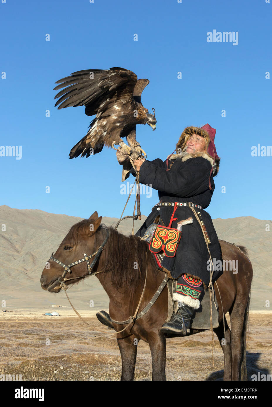 Elder Kazakh eagle hunter posing with his eagle and his horse #1, Western Mongolia Stock Photo