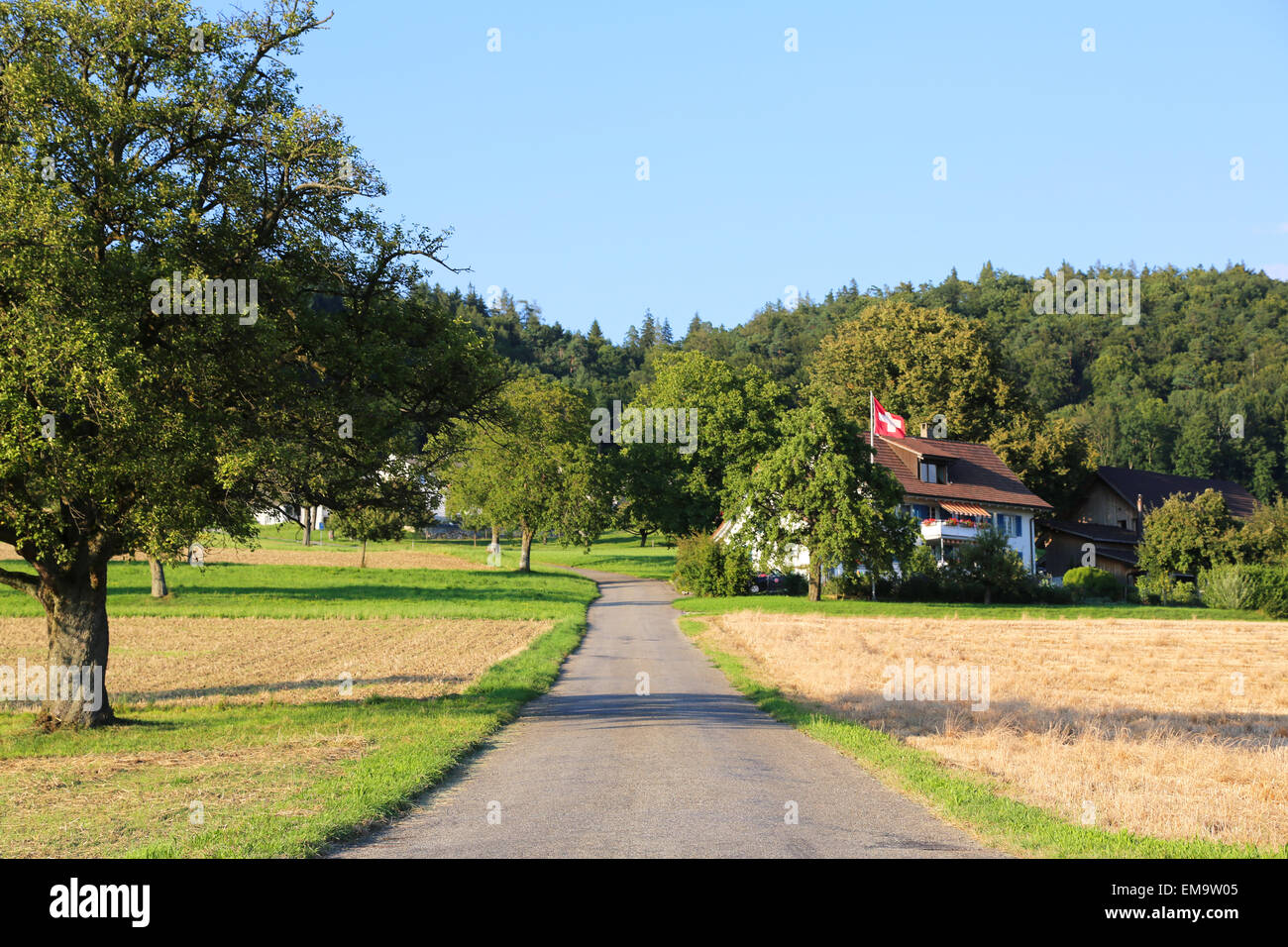 Road leading to a Swiss farm house Stock Photo