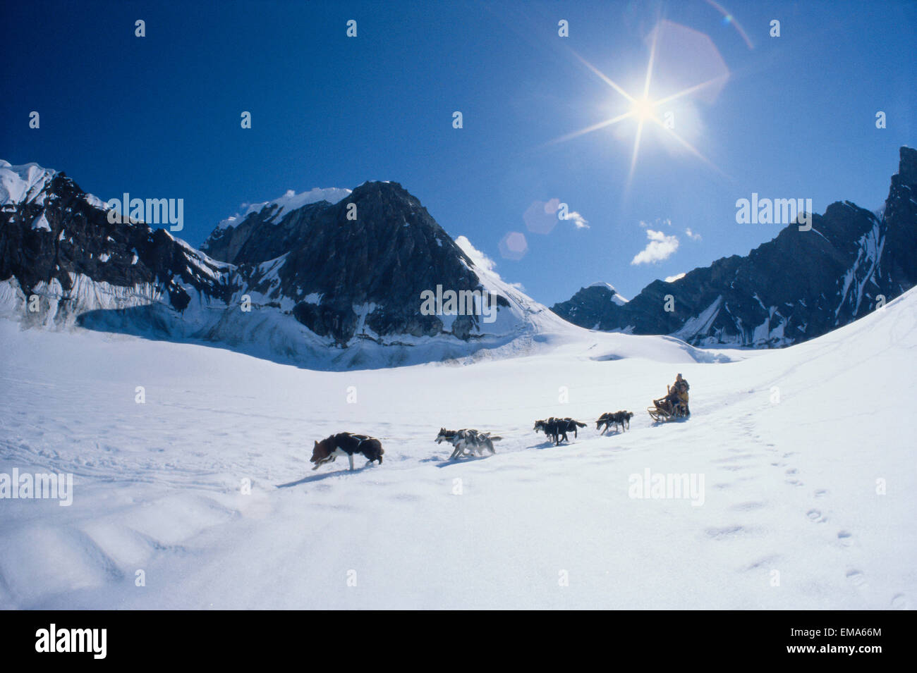 Alaska, Mt. Mckinley Area, Couple Dog Sledding In Snow, Mountains, Star Filter Sun - Stock Image