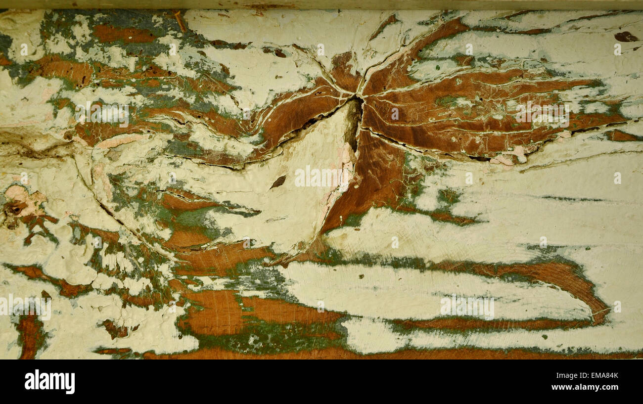 Fantastic pattern of rotting paint on wooden door in France - Stock Image