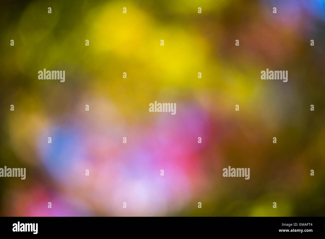Colorful background with defocused lights - Stock Image