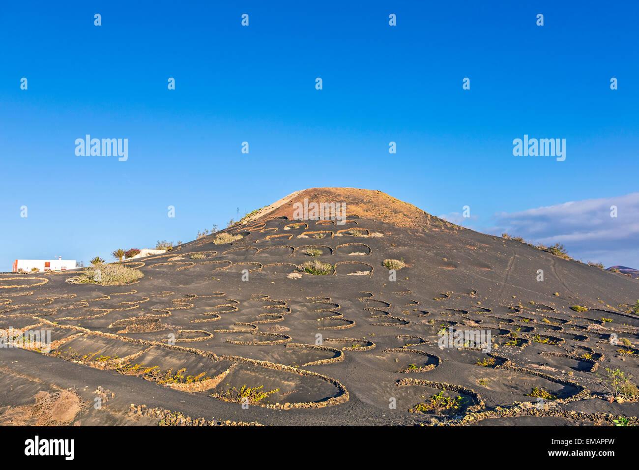 volcano in La Geria, Lanzarote - Stock Image