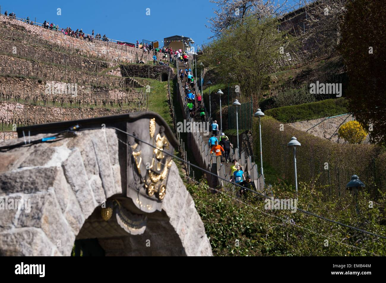 Radebeul, Germany. 19th Apr, 2015. Participants in the Mount Everest Stair Marathon run up and down a total of 397 - Stock Image