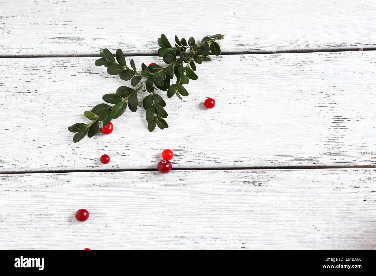 Twig with cranberries on the boards, food - Stock Image