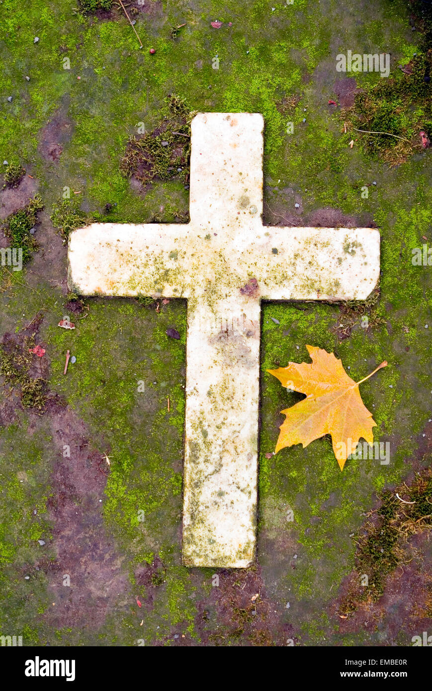 Cross with Leave as Symbol of sadness on the old graveyard of bonn germany europe Stock Photo