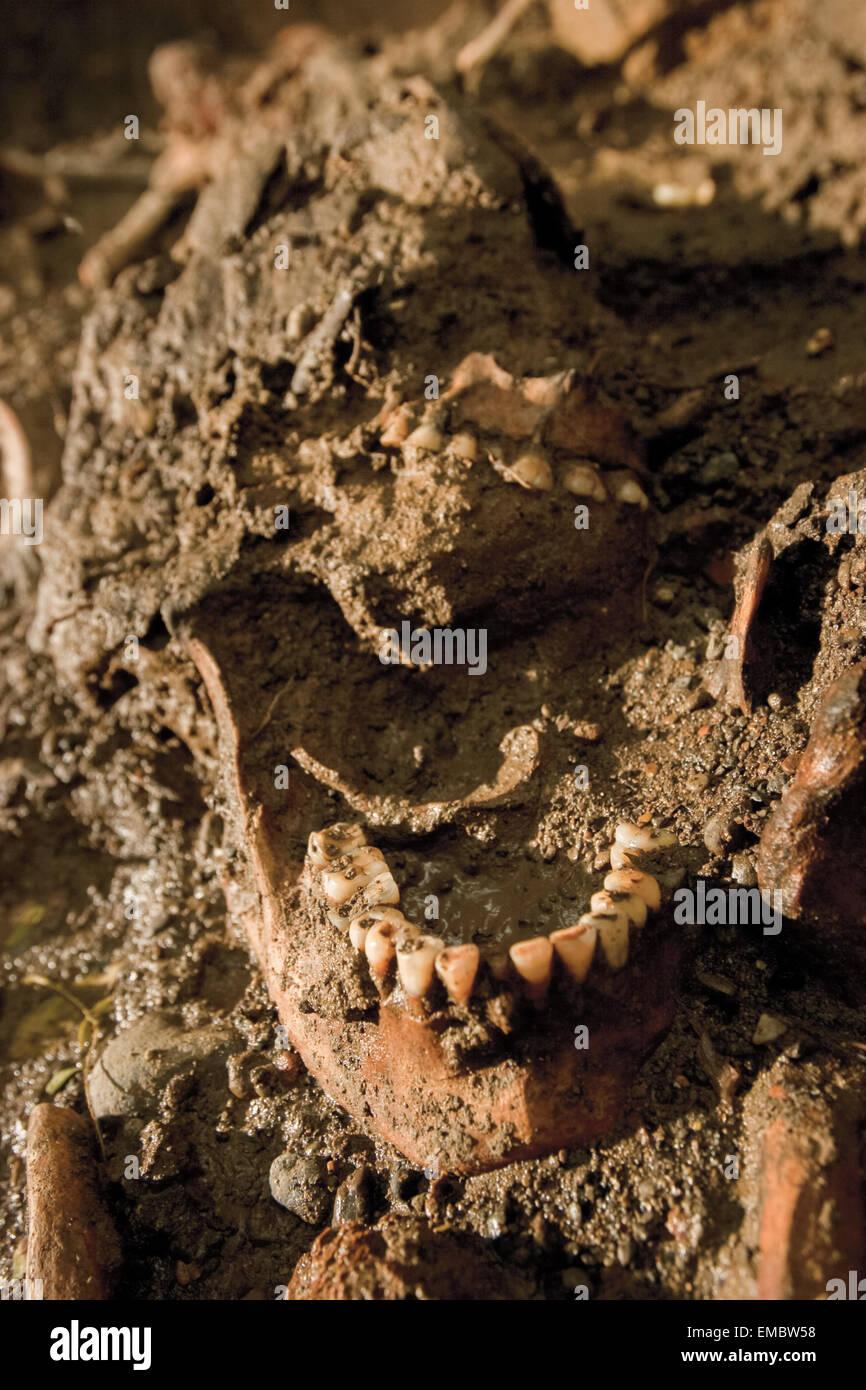 Excavation of protohistoric skeleton in Cikuntul village, Karawang, Indonesia. - Stock Image