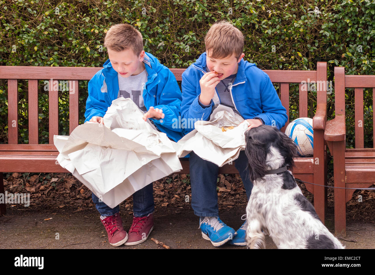 Two boys eating fish & chips on a park bench in the Uk - Stock Image