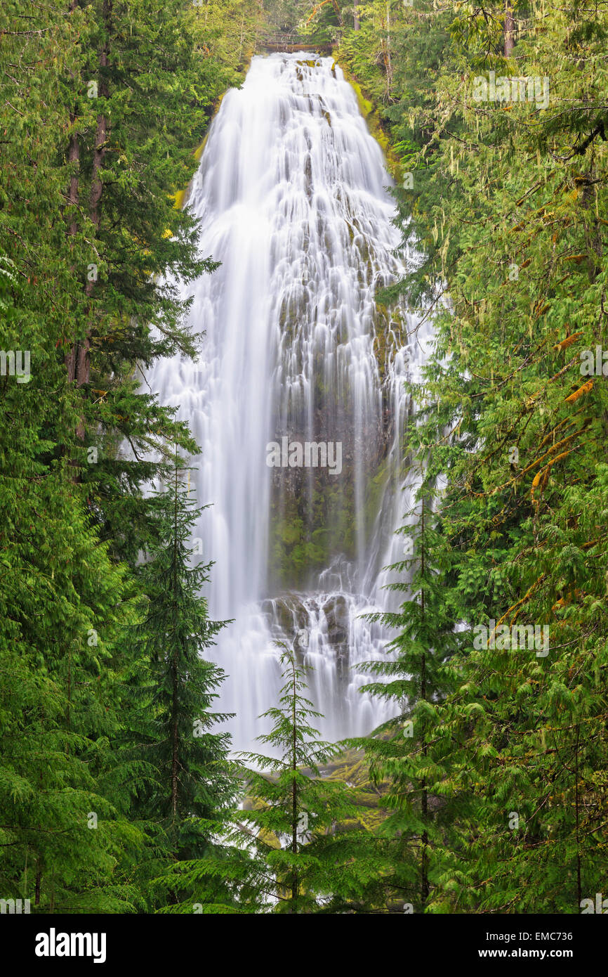 USA, Oregon, Lane County, Proxy Falls Stock Photo