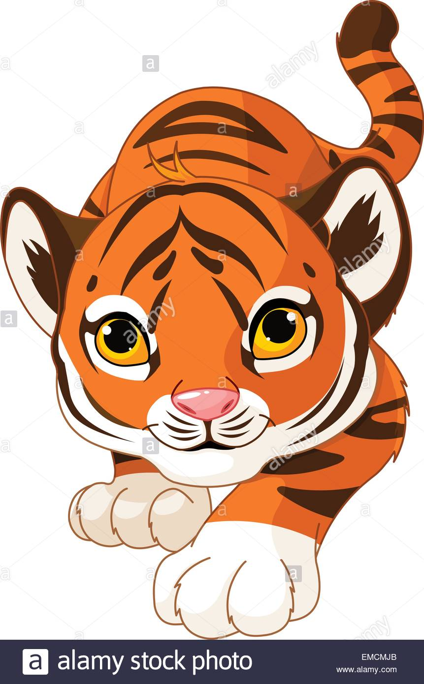 Crouching baby tiger - Stock Vector