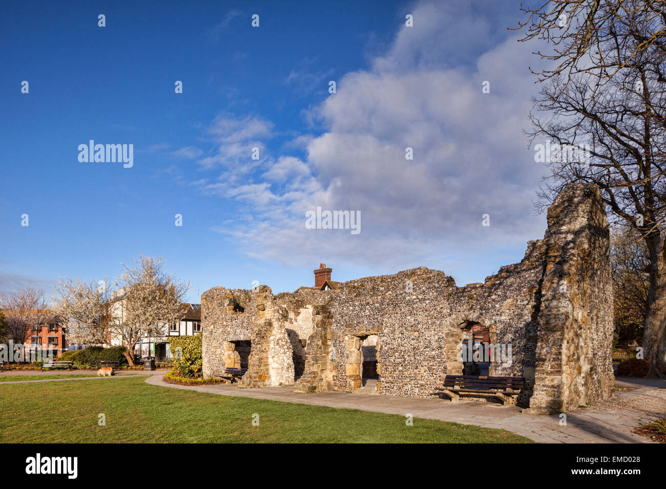 Ruin of Blackfriars Dominican Friary, Arundel, Sussex, England, UK, on a fine spring morning. - Stock Image