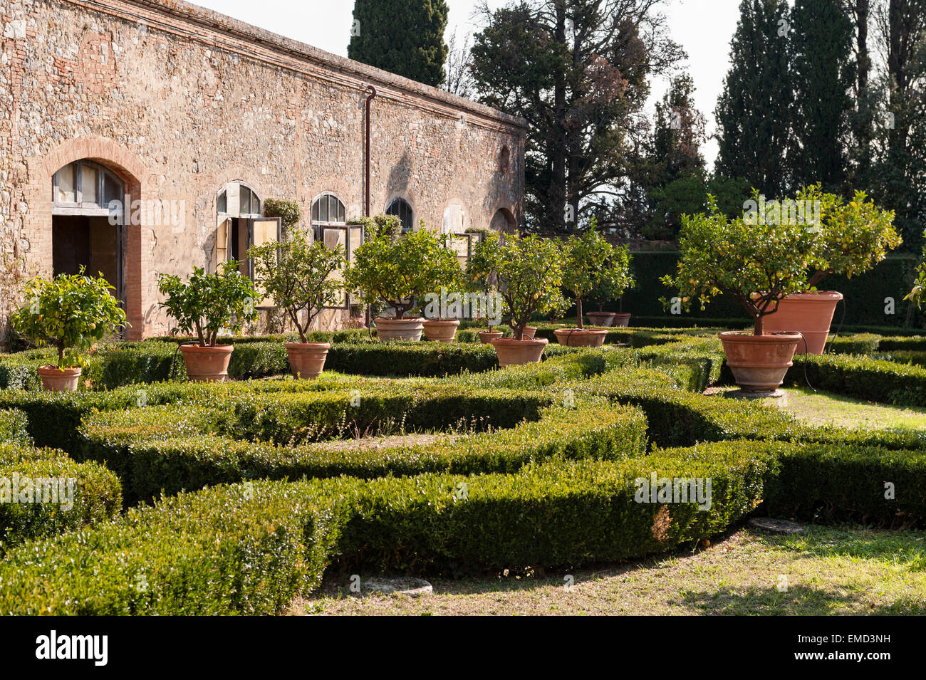 Vicobello, Siena, Tuscany, Italy. The formal Italian garden with clipped box hedges and pots of lemon trees outside Stock Photo