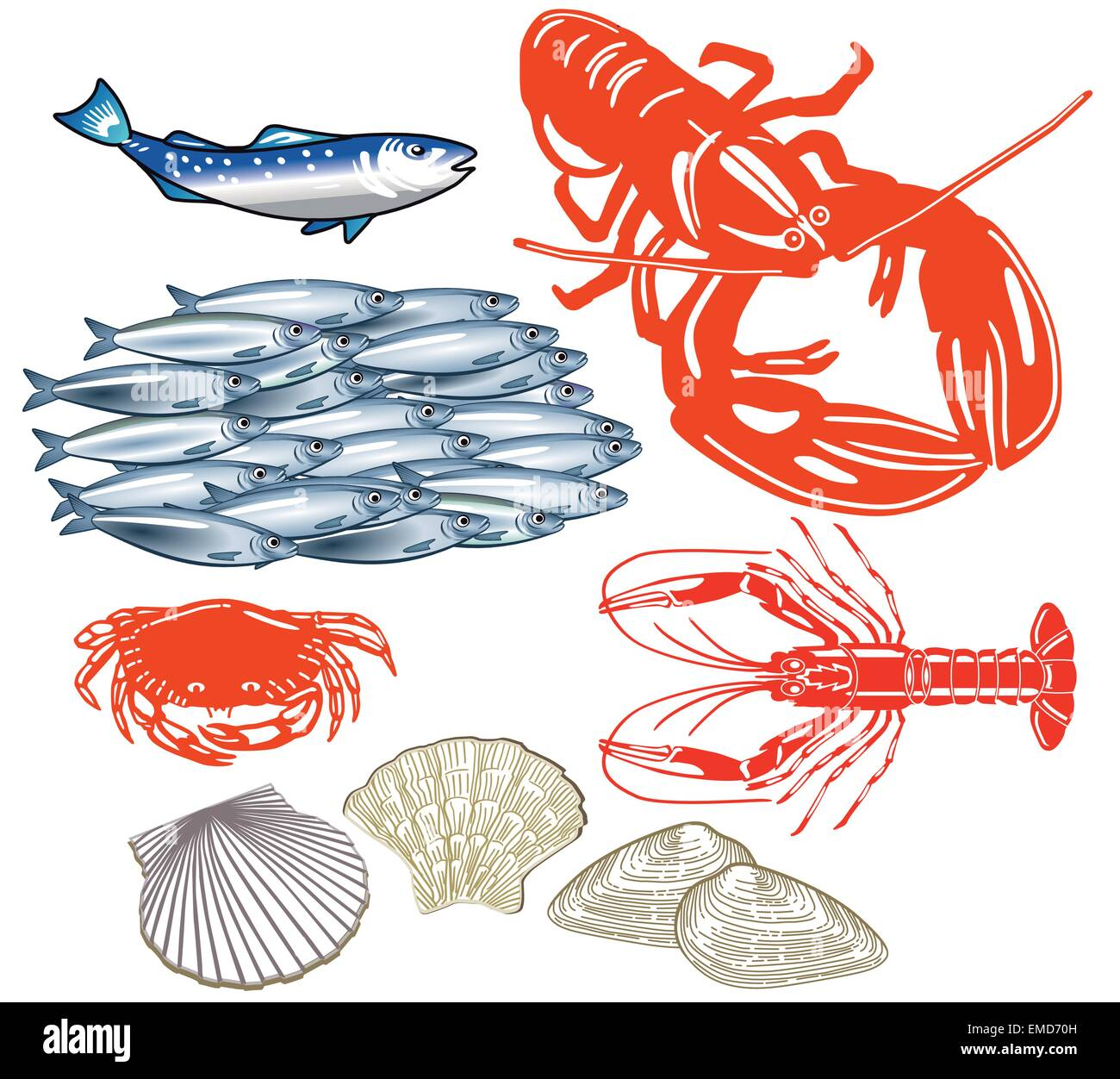 Seafood isolated on white - Stock Vector