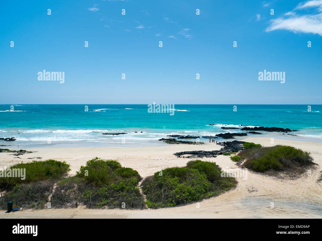 Beach on Galapagos Isabela island, Ecuador - Stock Image