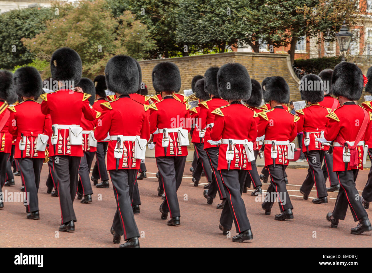 An image of The Regimental Band of the Coldstream Guards marching toward St James's Palace - Stock Image