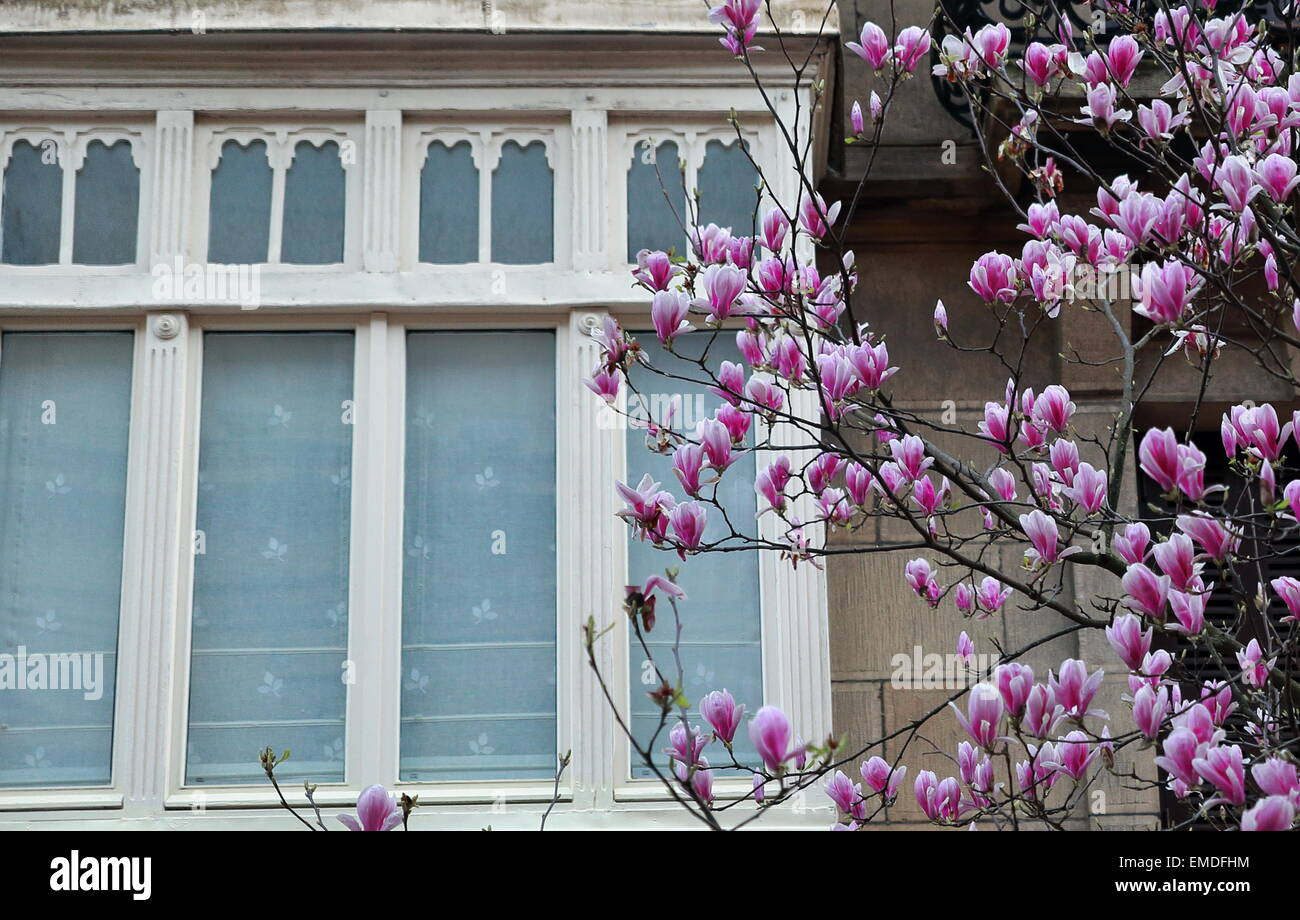 Springtime-Donostia - Stock Image