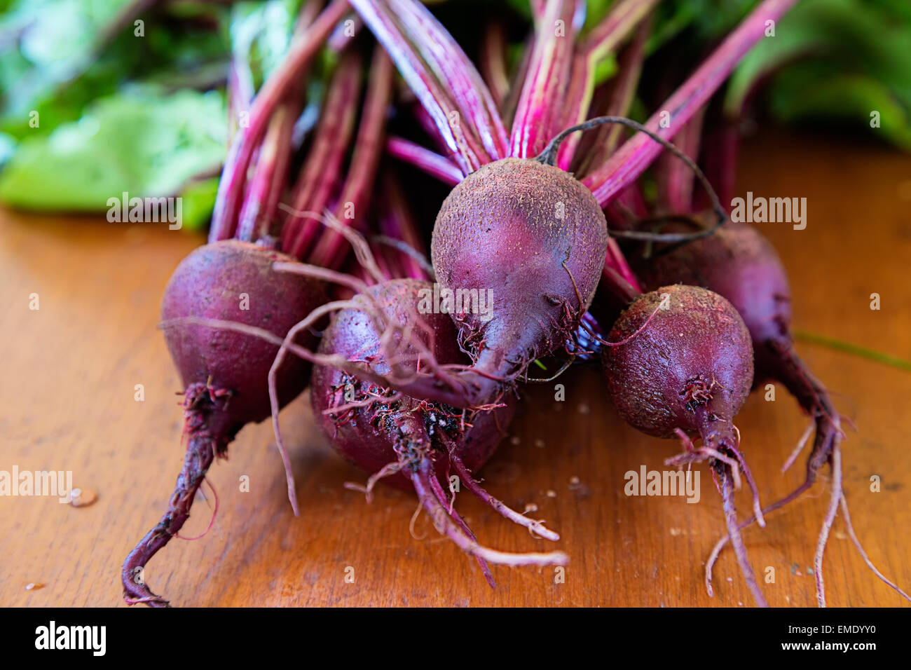 Fresh garden beets on a wooden table. - Stock Image