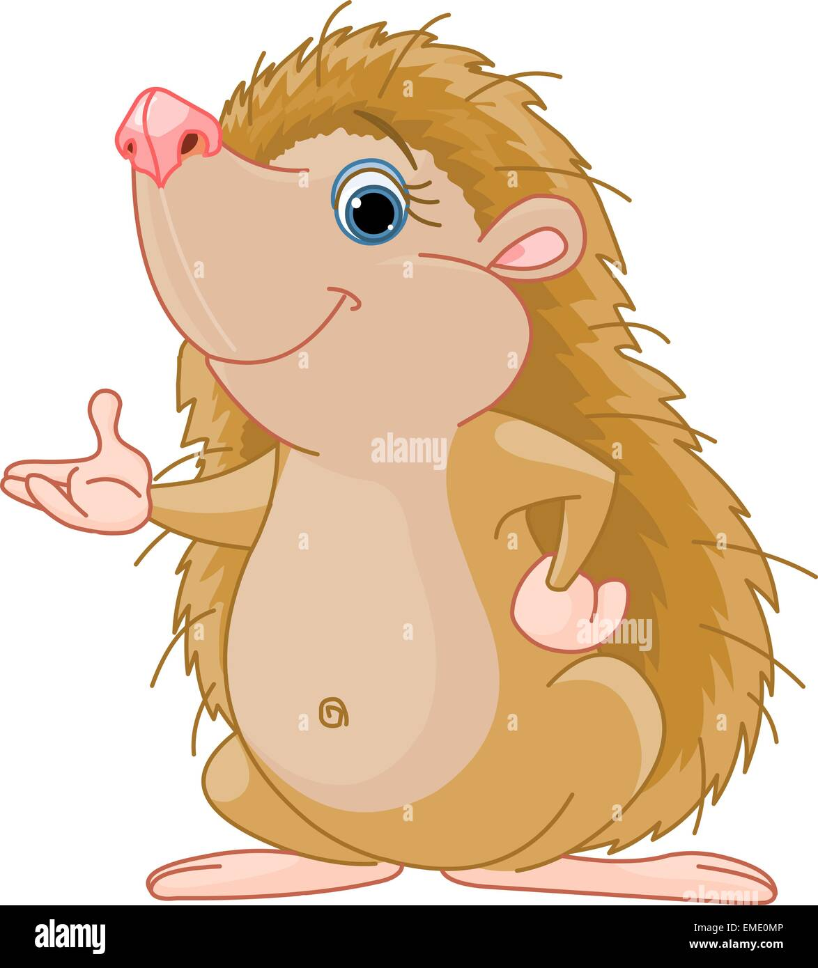 Hedgehog presenting - Stock Image