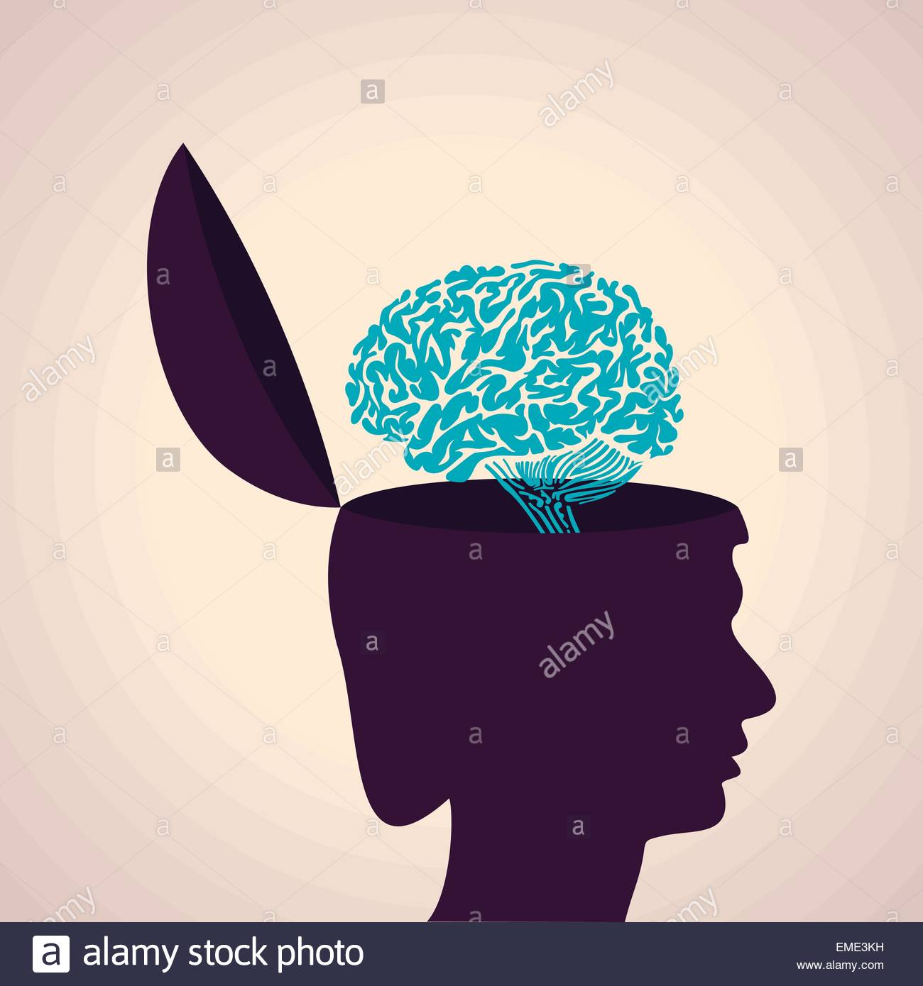 Illustration of thinking concept-Human head with brain - Stock Image