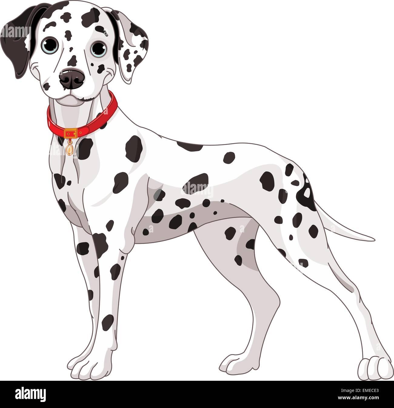 Cute Dalmatian Dog - Stock Vector