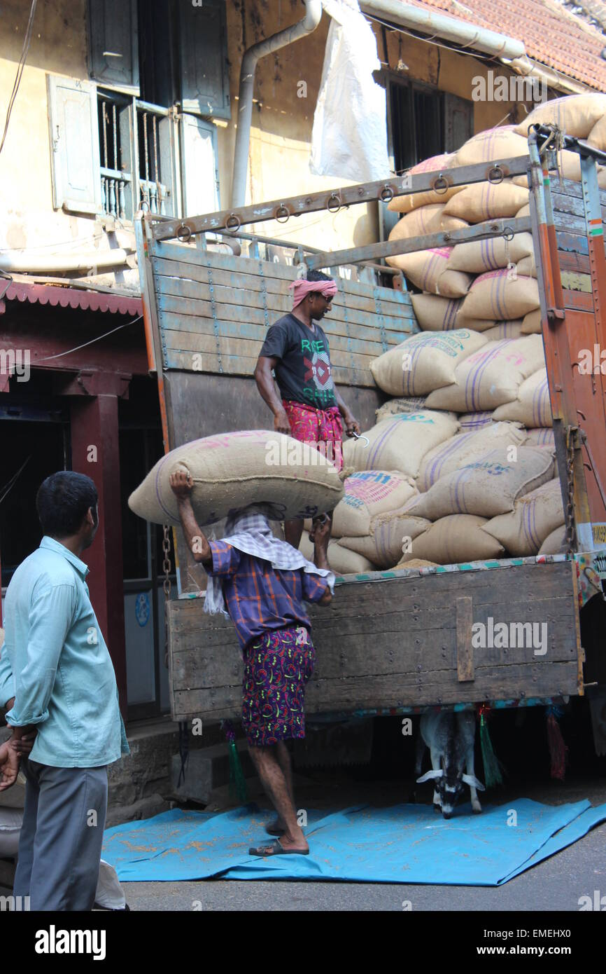 Unloading sacks from a lorry at one of the godowns (warehouses) in Mattancherry - Stock Image
