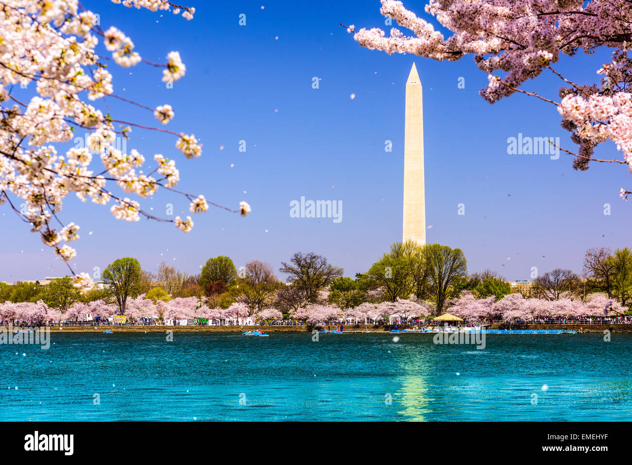 Washington, D.C. Washington Monument during spring. - Stock Image