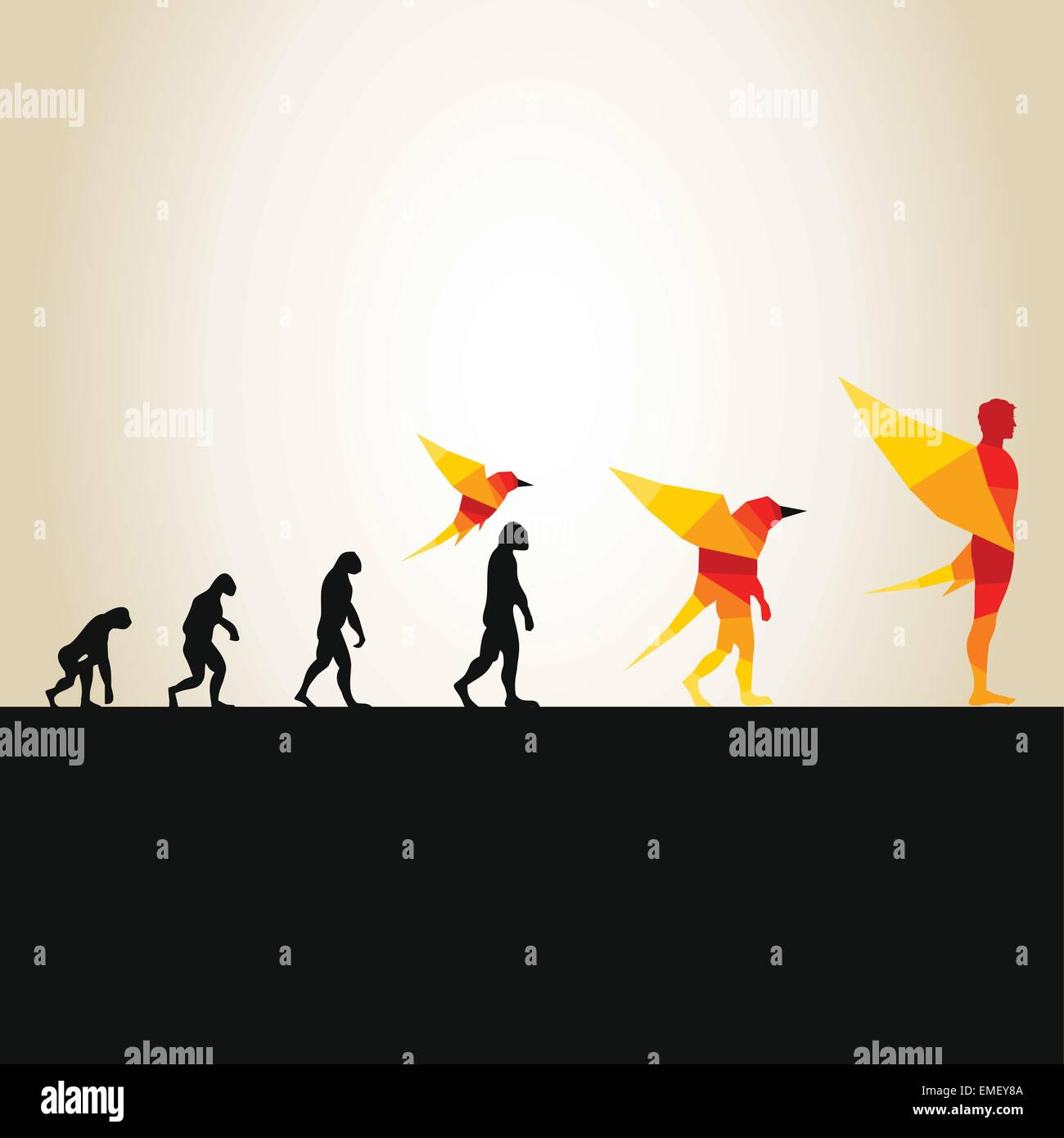 Evolution in a bird2 - Stock Image