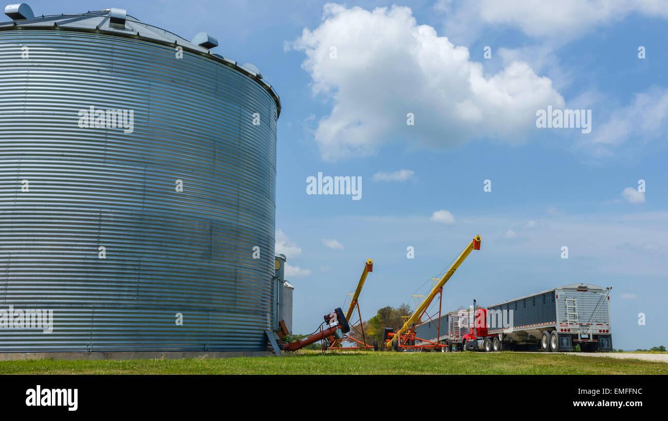 Grain Conveyor Stock Photos & Grain Conveyor Stock Images