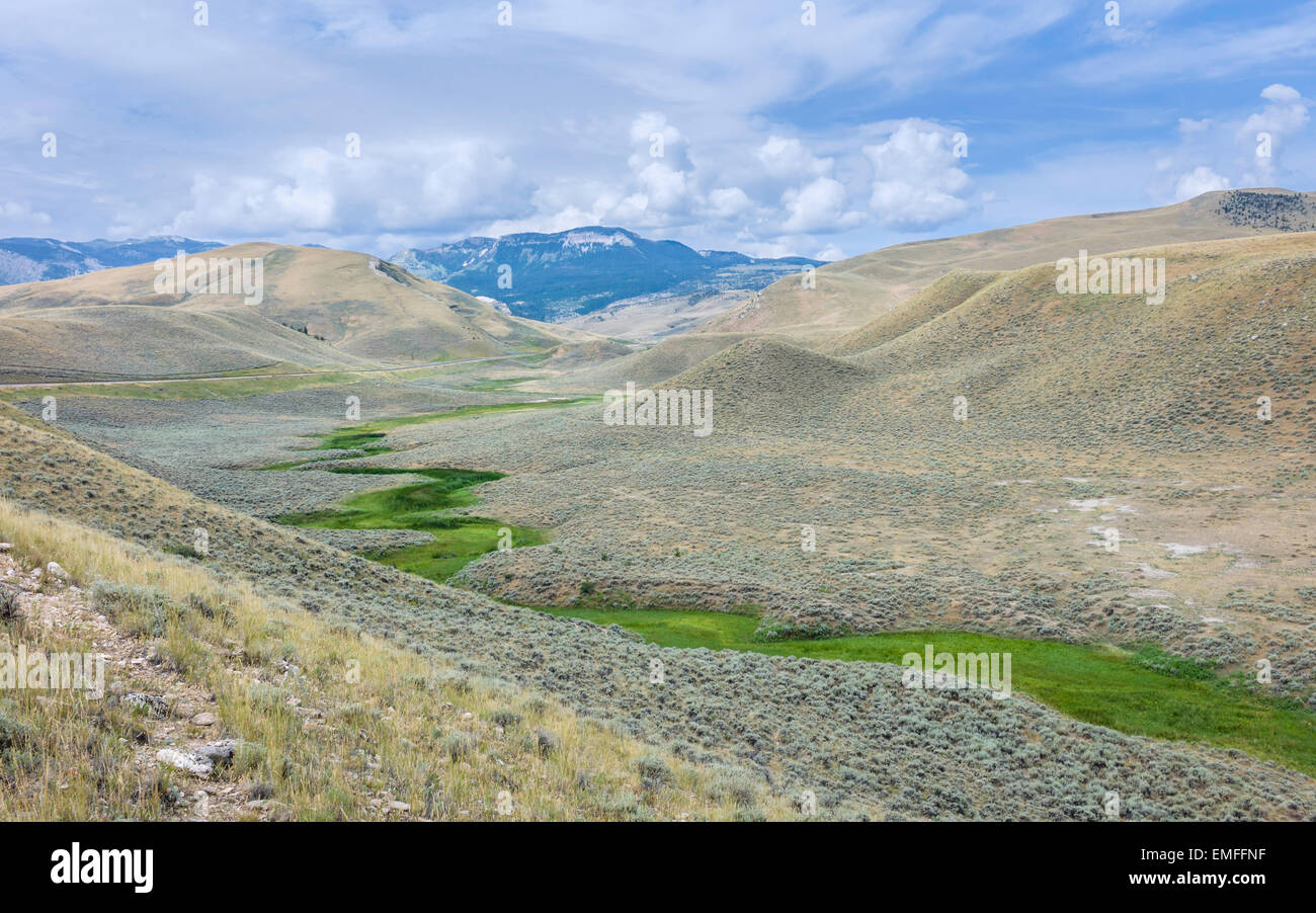 Foothills of the Beartooth Mountains with a view of a valley and dry river bed on a summer day near Red Lodge, Montana, - Stock Image