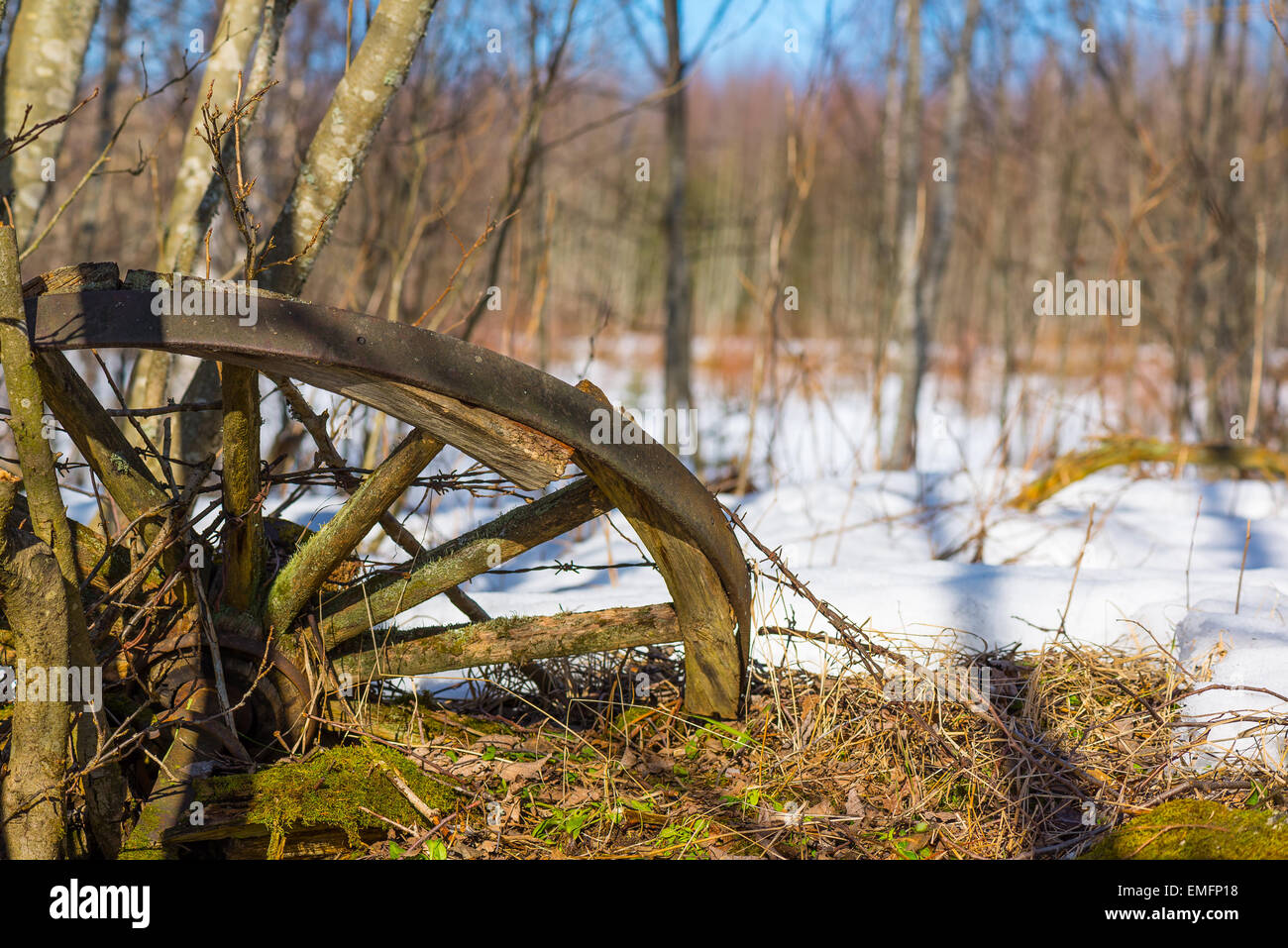 Old and broken cartwheel in Finnish countryside - Stock Image