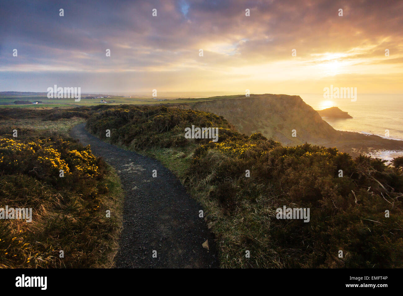 Cliff top path over the Giant's Causeway at sunset, Co. Antrim, Northern Ireland - Stock Image
