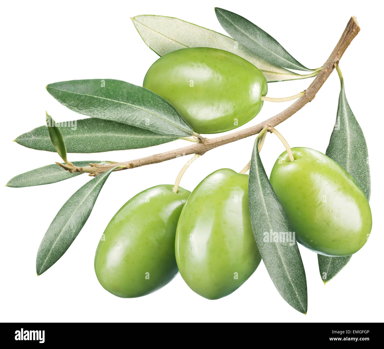 Green olives with leaves on a white background. File contains clipping paths. - Stock Image