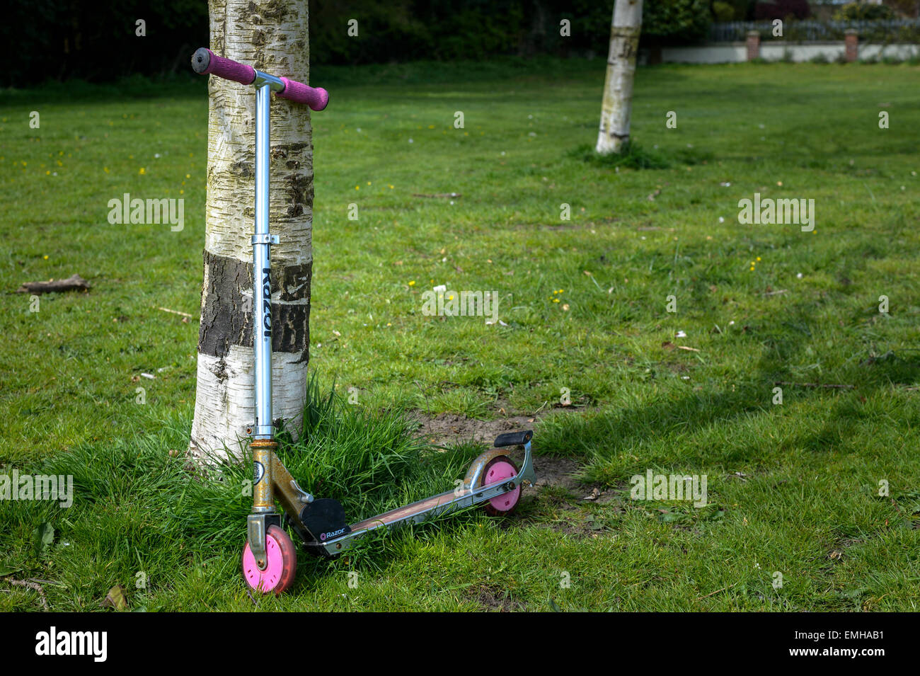 Abandoned child's scooter (Razor brand - 'Kick Scooter') leaning against a tree. Missing child concept. - Stock Image