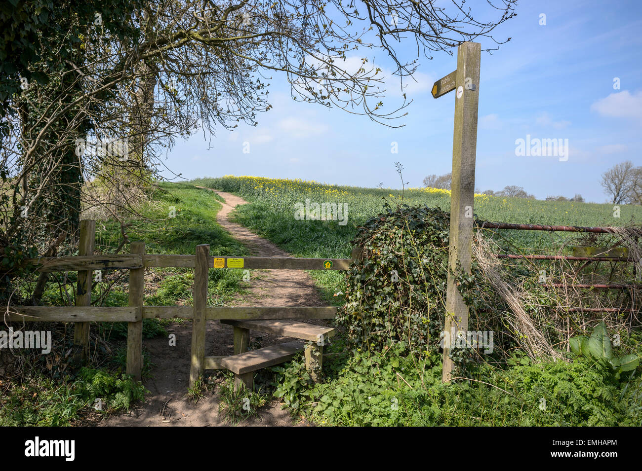 Wooden public footpath sign with stile over a fence with the path in the background, crossing fields, rural Yorkshire, - Stock Image