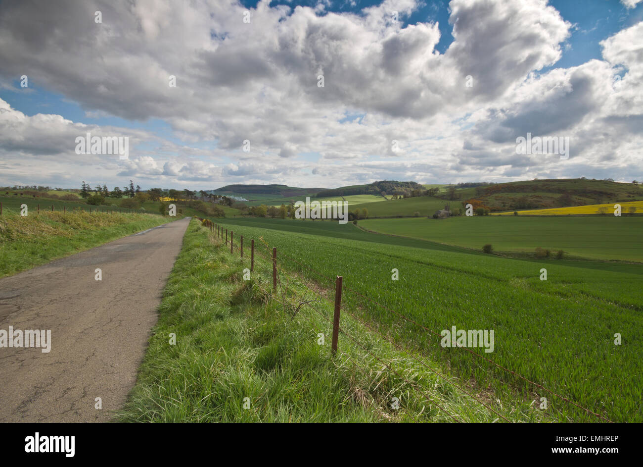 Landscape shot of a minor road in the Fife region of Scotland running along fields under a fluffy cloud sky - Stock Image