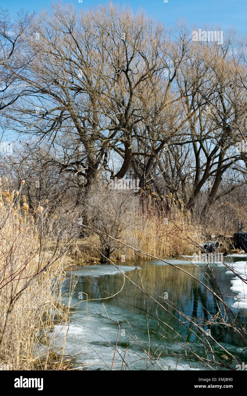 A pond beside the historical Soulange Canal. - Stock Image