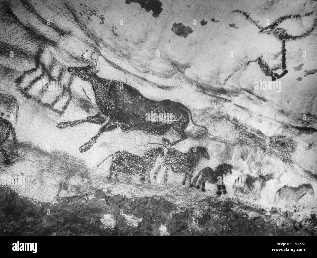"""Prehistoric Cave Painting, Lascaux, France, """"Images Préhistoriques"""", Film Still, 1955, Arcady et Rowe - Stock Image"""