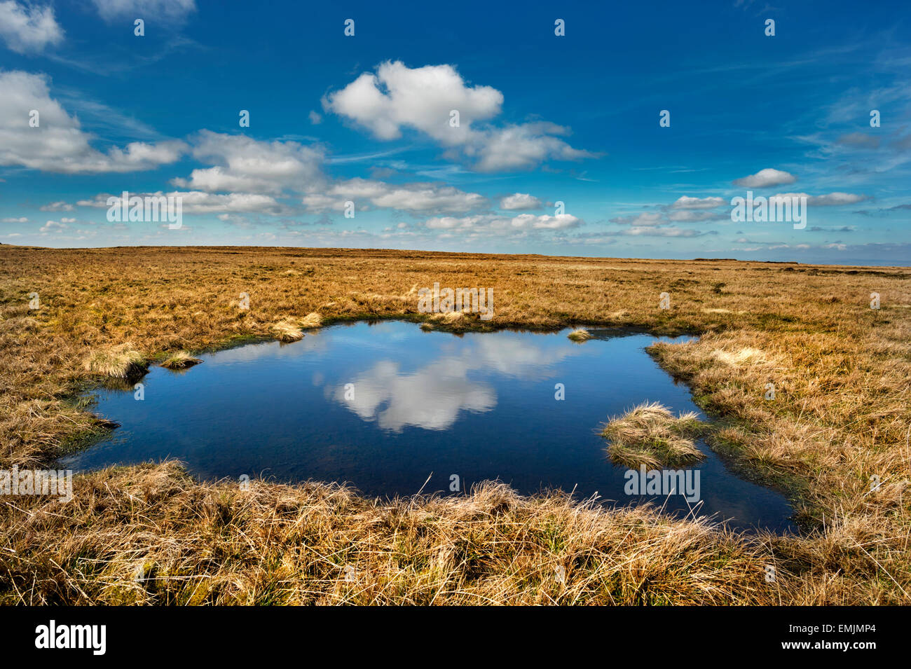 Wild Boar Fell, near Kirkby Stephen, Eden Valley, Cumbria, UK, with cloud reflection. A popular destination for - Stock Image